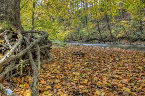 Photograph - Fall Beauty At Beaver Creek by David Dufresne