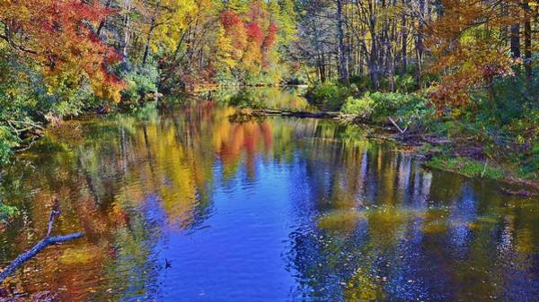 Photograph - Fall Beauty by Bill Hosford