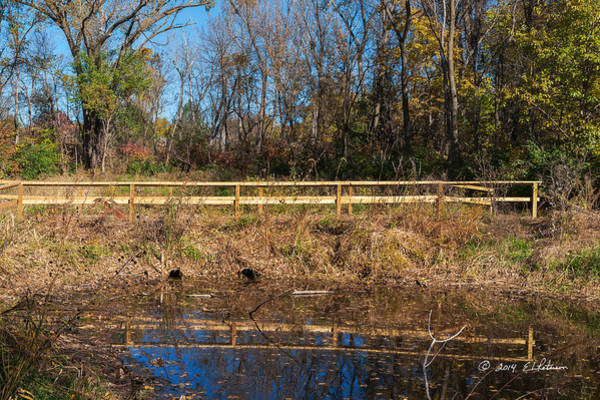 Photograph - Fall Bridge by Edward Peterson