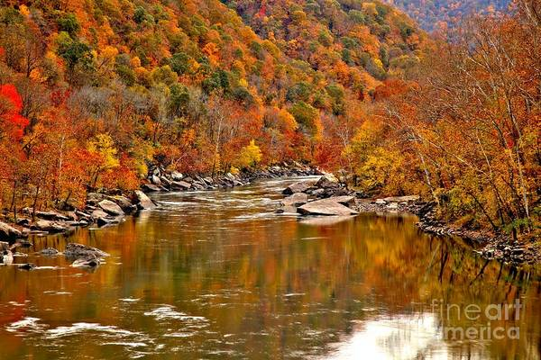 Photograph - Fall Brilliance At New River by Adam Jewell