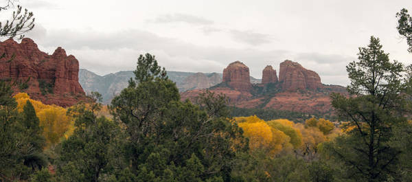 Photograph - Fall Color Sedona 0495 by Tam Ryan