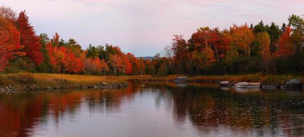 Photograph - Fall Color At Sunset by Mike Farslow