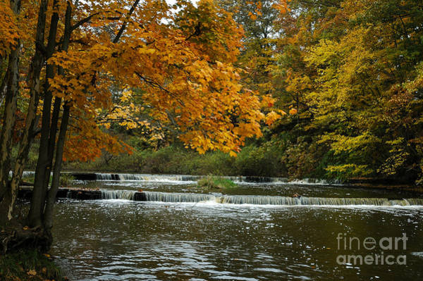 Photograph - Fall Color At The River by Paul Quinn