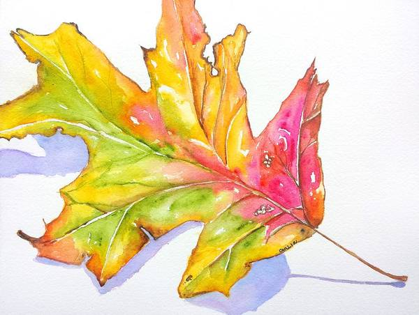 Wall Art - Painting - Fall Color Leaf With Shadow	 by Carlin Blahnik CarlinArtWatercolor