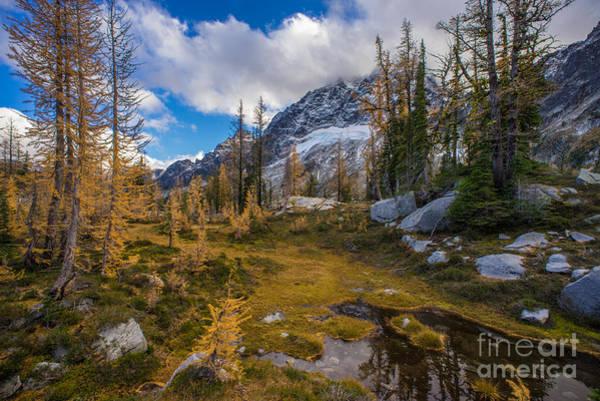 Stuart Photograph - Fall Colors And Mount Stuart by Mike Reid