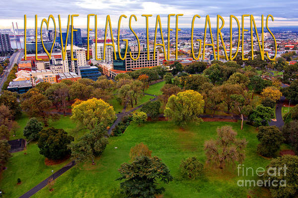 Photograph - Fall Colors At Flagstaff Gardens In Melbourne by Beverly Claire Kaiya