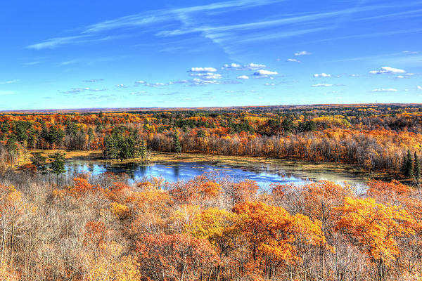 Wall Art - Photograph - Fall Colors At Itasca State Park by Shawn Everhart