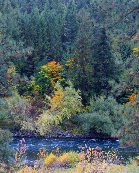 Photograph - Fall Colors By The Spokane River by Ben Upham III