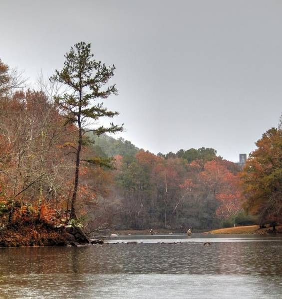 Photograph - Fall Colors Fly Fishing The Little Mo by Philip Rispin