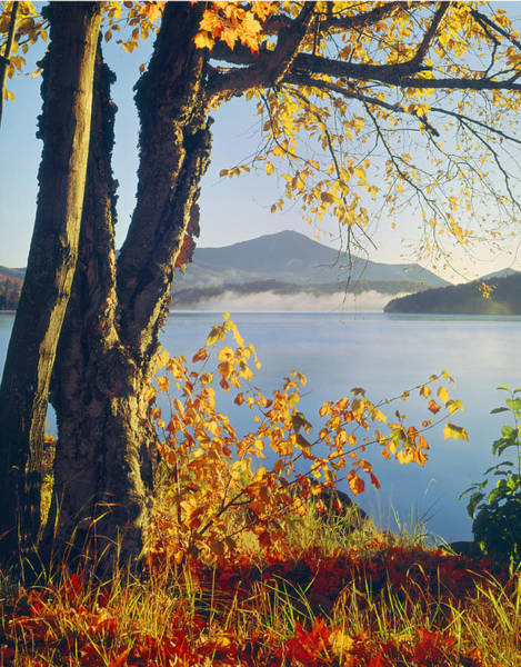 Photograph - Fall Colors Frame Whiteface Mountain by Ed  Cooper Photography