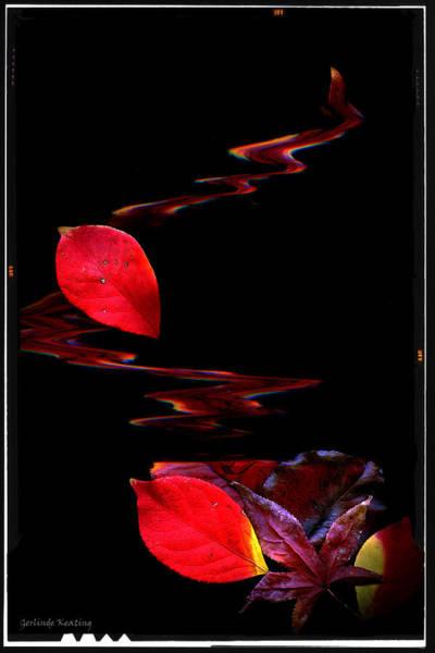 Photograph - Fall Colors by Gerlinde Keating - Galleria GK Keating Associates Inc