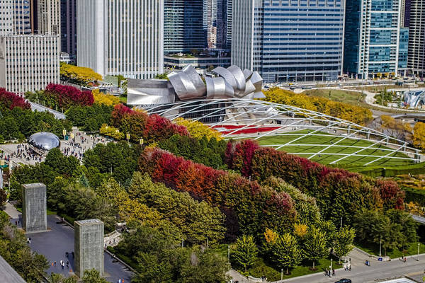 Photograph - Fall Colors In Chicago's Millennium Park  by Sven Brogren