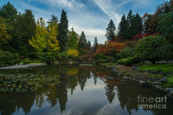 Koi Pond Photograph - Fall Colors Japanese Garden Serenity by Mike Reid