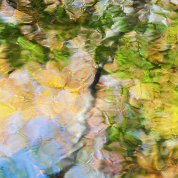 Wall Art - Photograph - Fall Colors Reflect In The Rippled by Brenda Tharp