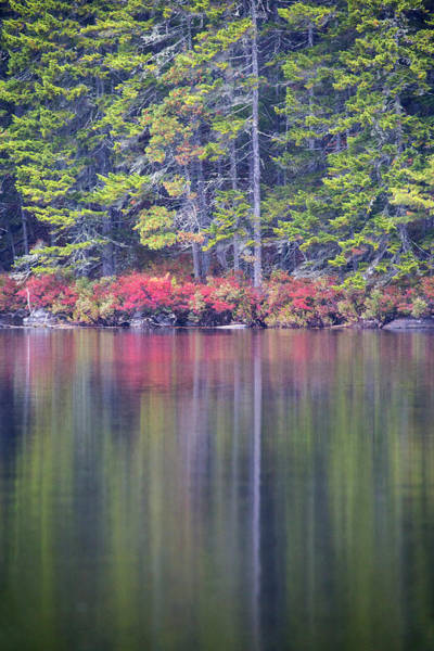 Baxter State Park Photograph - Fall Colors Reflecting Off The Water by Robbie George