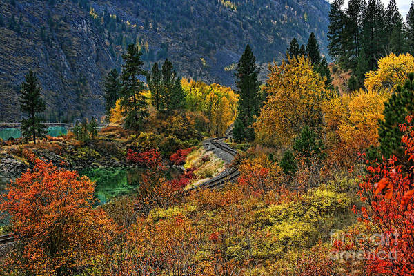 Wall Art - Photograph - Fall Colors by Scarlett Images Photography