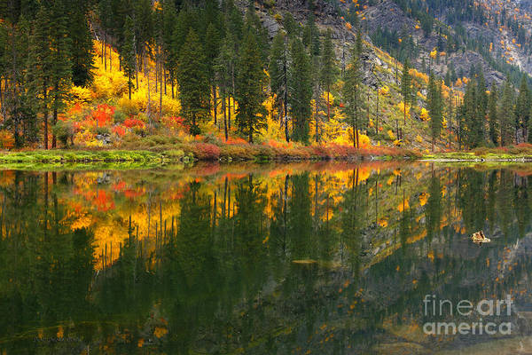 Photograph - Fall Colors - Tumwater Canyon by Beve Brown-Clark Photography