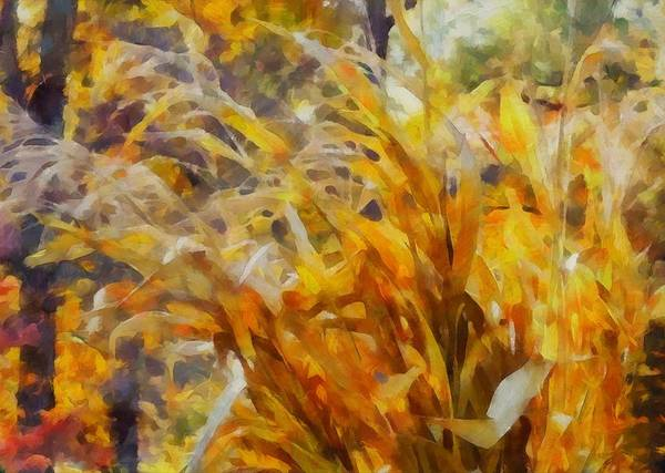 Wall Art - Painting - Fall Corn Stalks by Dan Sproul