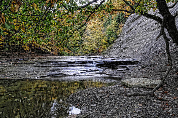 Photograph - Fall Creek by David Armstrong