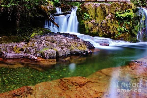 Fall Creek Oregon Art Print