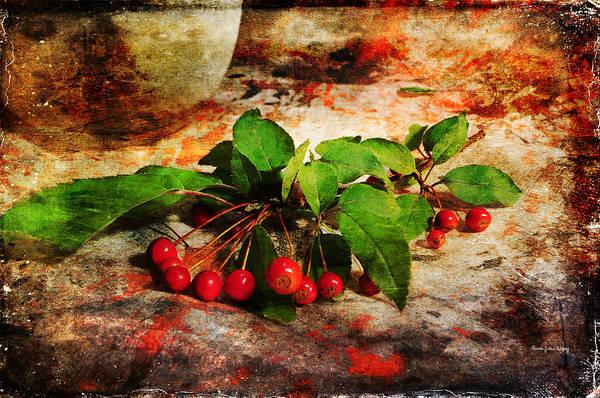 Photograph - Fall Decor by Randi Grace Nilsberg