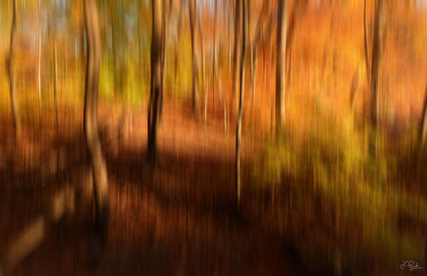 Autumn In New England Photograph - Fall Divine by Lourry Legarde