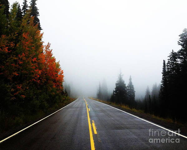 Art Print featuring the photograph Fall Drive 8x10 Crop by Kate Avery