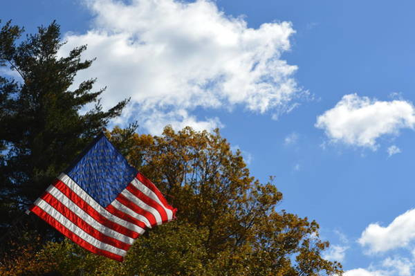 Photograph - Fall Flag by Chris Alberding