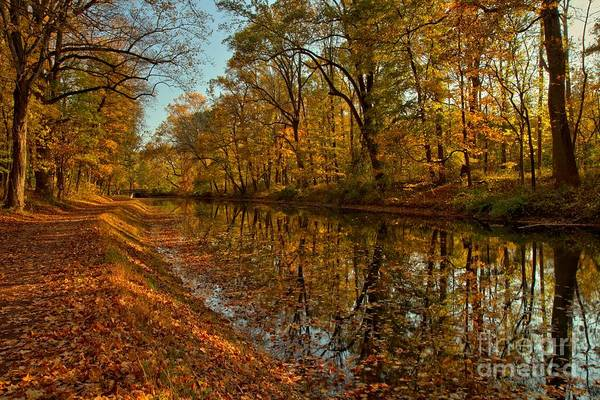 Photograph - Fall Foliage Along The Delaware Canal by Adam Jewell