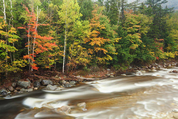 Pemigewasset River Wall Art - Photograph - Fall Foliage Along The East Branch by Jerry and Marcy Monkman