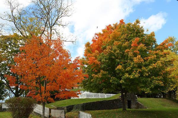 Fall Foliage Colors 09 Art Print