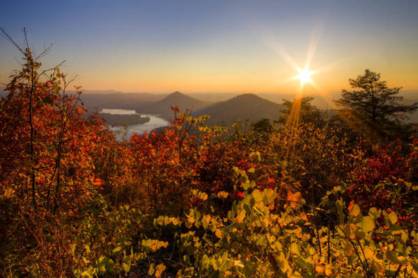 Chilhowee Photograph - Fall Foliage by Debra and Dave Vanderlaan