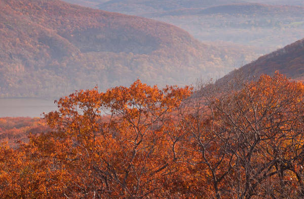 Photograph - Fall Foliage In The Hudson Valley by Nancy De Flon