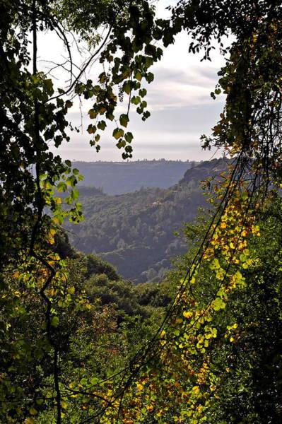 Fall Frames The Canyon Art Print