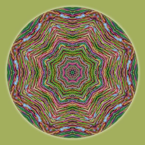 Photograph - Fall Grass Mandala by Beth Sawickie