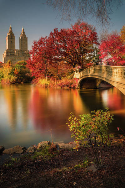 Colour Photograph - Fall In Central Park by Christopher R. Veizaga