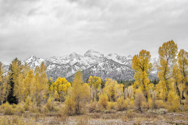 Photograph - Fall In Grand Teton National Park by Paul W Sharpe Aka Wizard of Wonders