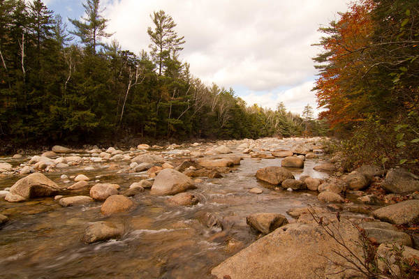 Photograph - Fall In Nh 3 by Natalie Rotman Cote