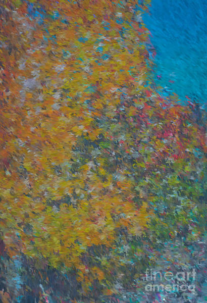 Mixed Media - Fall In Taos  by Charles Muhle