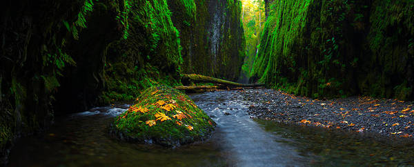 Photograph - Fall In The Gorge by Dustin  LeFevre