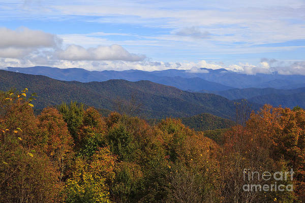 Photograph - Fall In The Mountains by Jill Lang