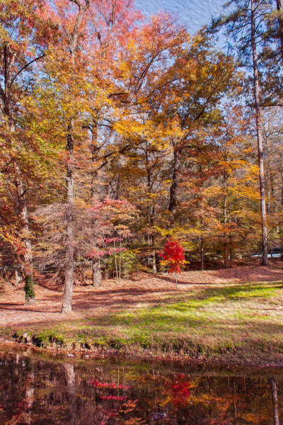 Photograph - Fall In The Ozarks by John M Bailey