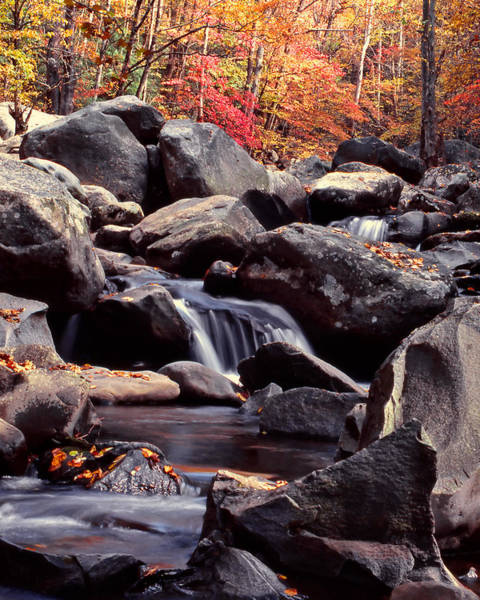 Photograph - Fall In The Smoky Mountains by Harold Rau