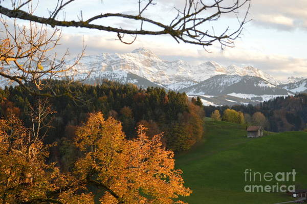 Photograph - Fall In The Swiss Alps by Susanne Van Hulst