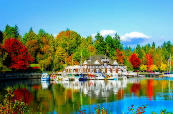 Photograph - Fall In Vancouver by Lynn Bauer