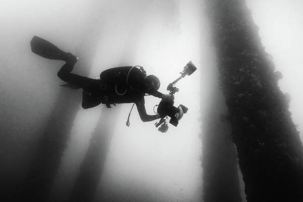 Diving Photograph - Fall Into The Silence by Marcel Rebro