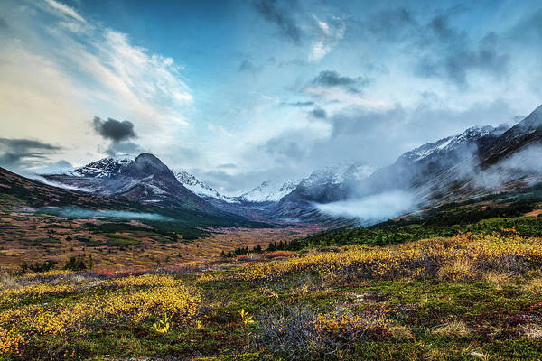 Fall Landscape Of Tundra And Willows Art Print