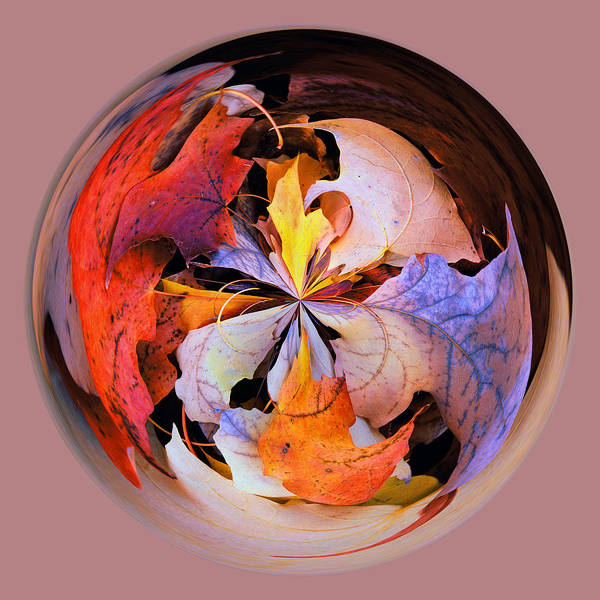 Fall Leaves Orb Art Print