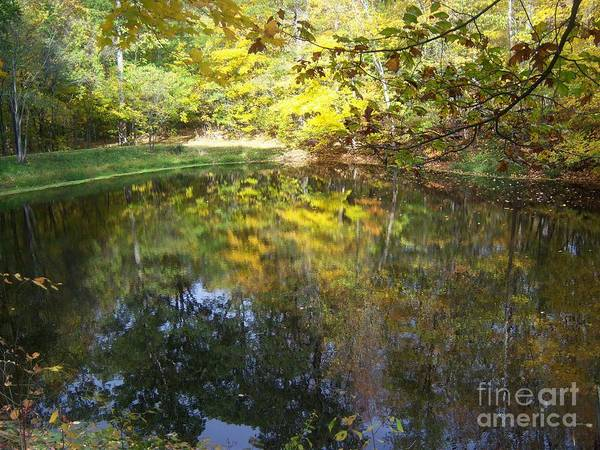 Photograph - Fall Mirror by Pamela Clements