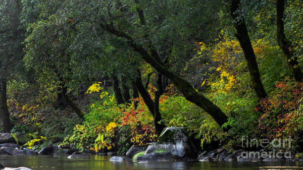 Yuba River Photograph - Autumn On The Yuba River  by Leslie Wells